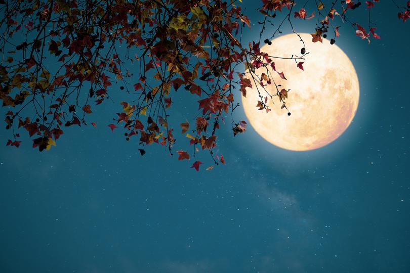 سيدة.. على خد القمر