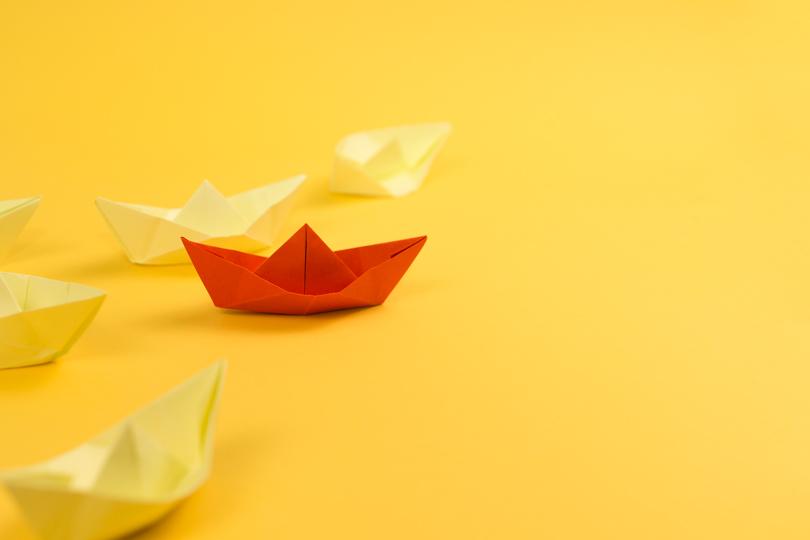 القيادة: هل أصبحت القيادة فيتامينا عالميا؟