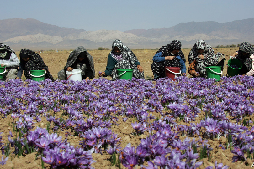في يومها العالمي.. المرأة الريفية ودورها في المجتمع