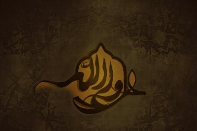 عام الحزن على شيعة أمير المؤمنين