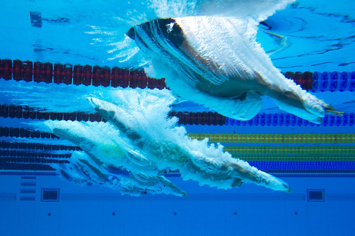 السباحون يغوصون خلال سباحة الرجال 100 م صدر في مركز باكو المائي في 15 مايو 2017.