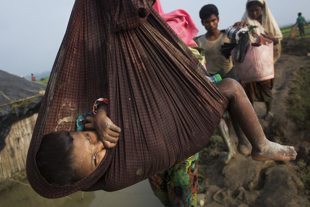 يتم نقل اطفال الروهينغا في حبال في حين تمشي عوائلهم عبر حقول الأرز بعد عبور الحدود إلى بنغلاديش في 5 سبتمبر 2017.