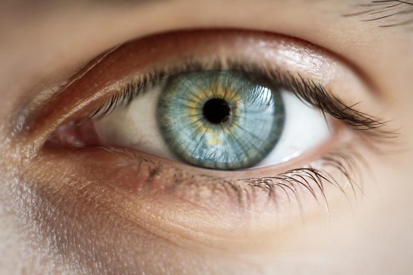 رفة عين اختلاجات الجسم بين الحقيقة والوهم