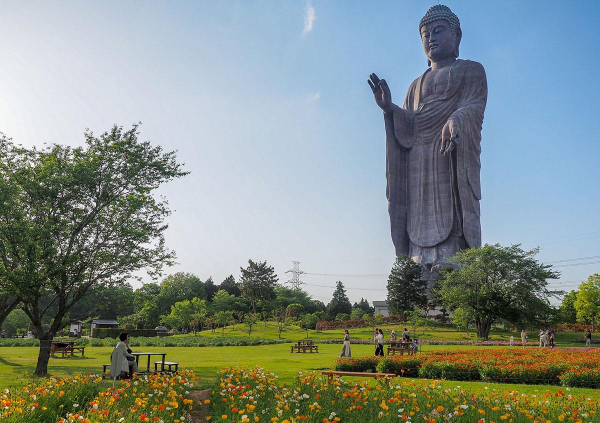 تمثال لبوذا أوشيكو في إيباراكي، اليابان، تم تصويره في 29 أبريل عام 2018. يحمل التمثال الذي يبلغ طوله 330 قدمًا (الذي يبلغ طوله 100 متر)، والذي تم الانتهاء منه في عام 1993، لقب أطول تمثال في العالم لمدة تسع سنوات، ويمتلك الآن مكان المركز الرابع.