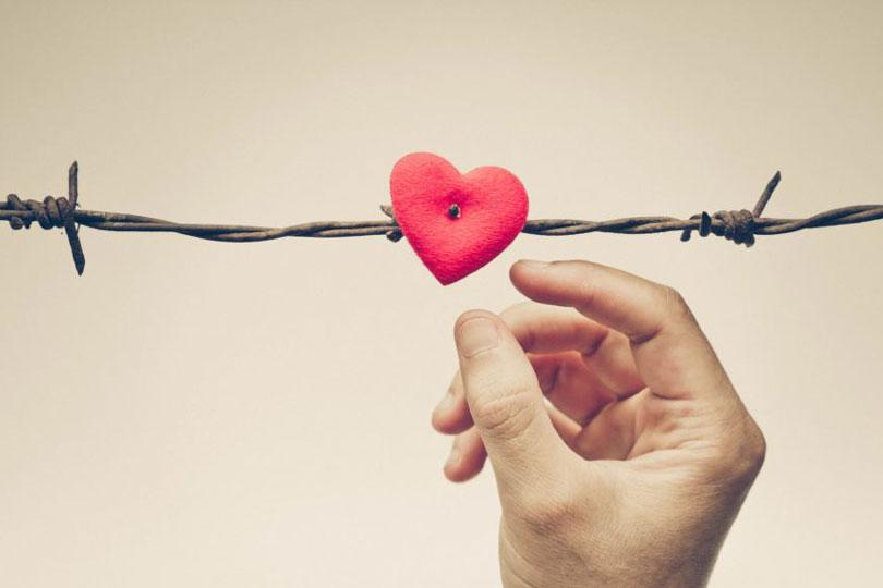 دور الحب في انتظام المجتمع