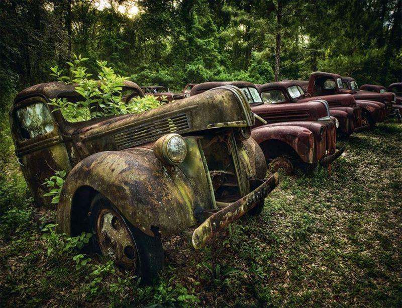 التقط المصور 160 صورة تسلط الضوء على الجمال البائد لهذه المركبات والسيارات الكلاسيكية، وكذلك هيبة الطبيعة التي التهمتها.